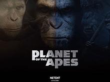 Планета Обезьян – играть бесплатно на полный экран